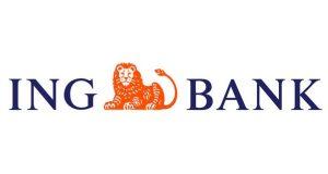 ING Bank Destek Hesap