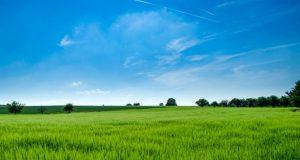 TEB Tarım Girişimcileri İçin Krediler